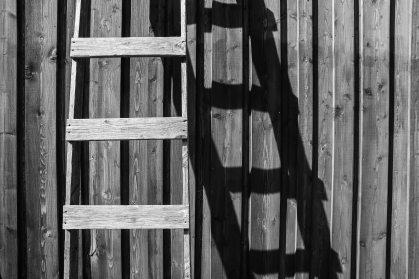 Lyn on a Ladder