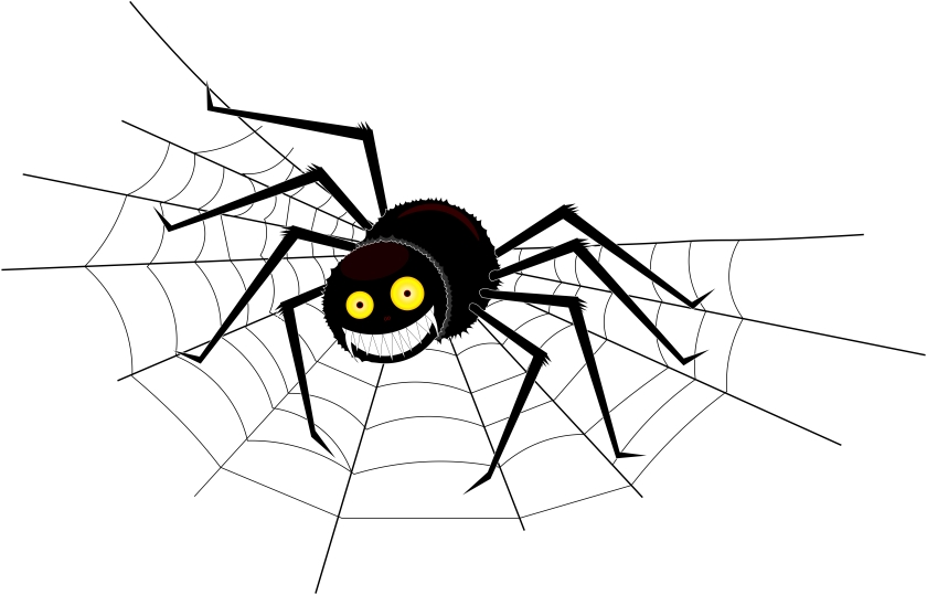 Spiders KNOW blog pic.jpg